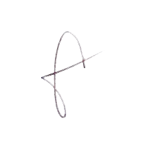 Signature Monsieur Thiriet